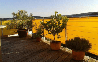Balkon Sichtschutz aus Solt92