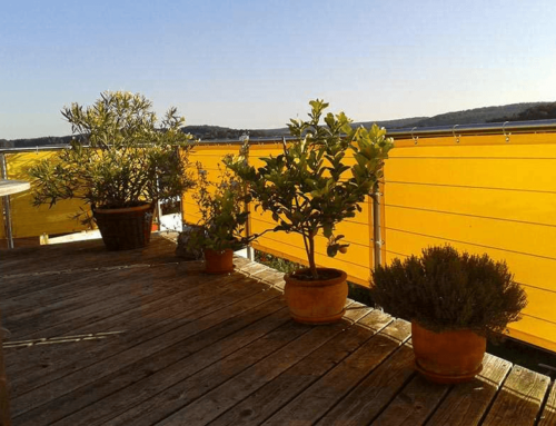 balkon und gartenpflanzen vor frost sch tzen. Black Bedroom Furniture Sets. Home Design Ideas